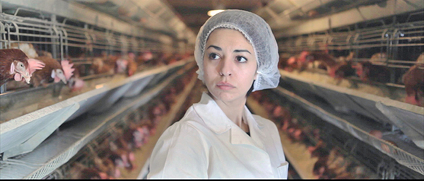 Young woman in chicken factory