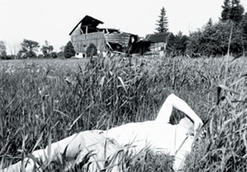 sunlit man lying in cornfield with dilapidated building in background