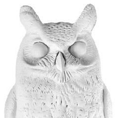 Nuit Blanche's White Owl