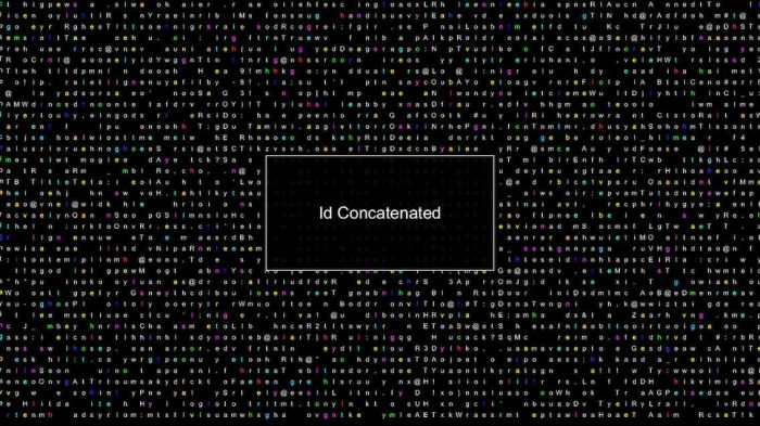 Screen shot from Palmer's project Id Concatenated