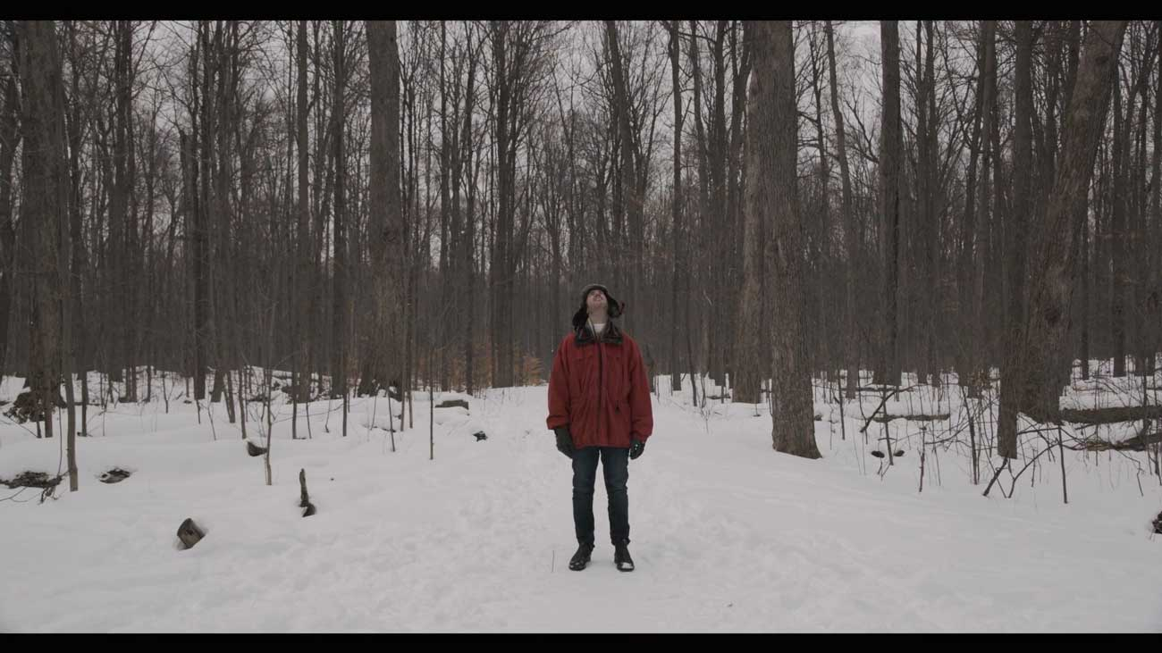 Person standing in the forest alone