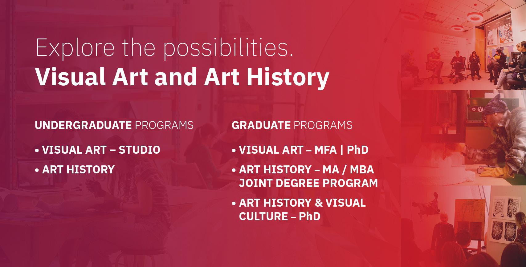 VAAH Undergrad and Grad Info