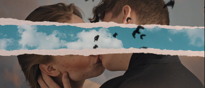 two men kiss between them the screen tears open to reveal birds flying in all directions